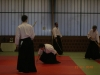 stage-aikido-bardet-waziers-014