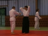 stage-aikido-bardet-waziers-019